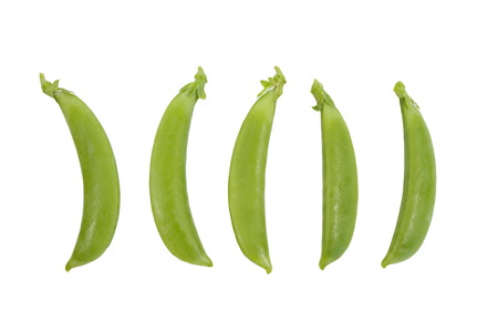 peas: Fresh garden pea isolate on white background
