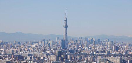 Vue de la ville de Tokyo et Tokyo ciel arbre repère