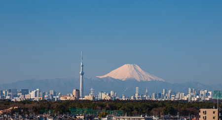 tokyo city: Tokyo city view with Mountain Fuji and Tokyo sky tree Editorial