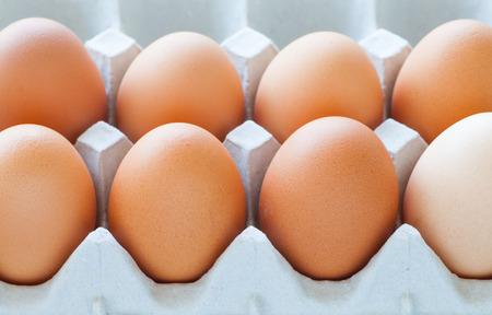 Healthy food brown chicken egg in carton container