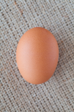 Healthy food brown chicken egg on brown fabric background photo