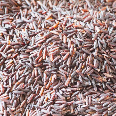 alimentacion sana: Close - up comida saludable arroz sin cocinar