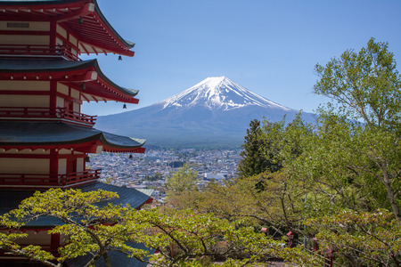 japan sky: Japanese Chureito pagoda and Mountain Fuji in spring season