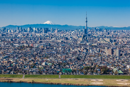 Opinión de la ciudad de Tokio con el árbol del cielo de Tokio y la montaña Fuji