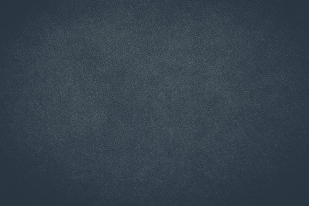 Close - up di texture in pelle nera e sfondo trasparente Archivio Fotografico - 42659969