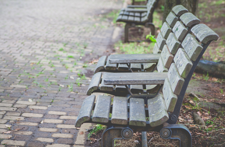 pubic: Wooden bench at pubic park in summer