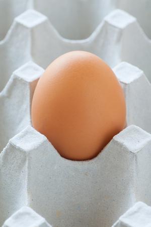 chicken egg: Healthy food brown chicken egg in carton container