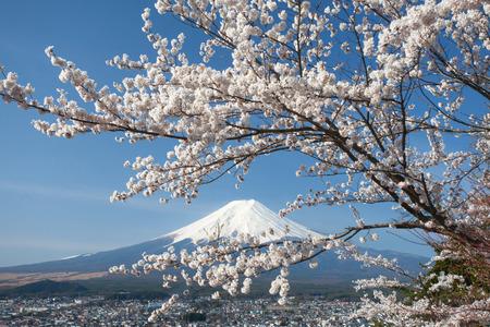Berg Fuji en kersenbloesem sakura in het voorjaar van het seizoen Stockfoto