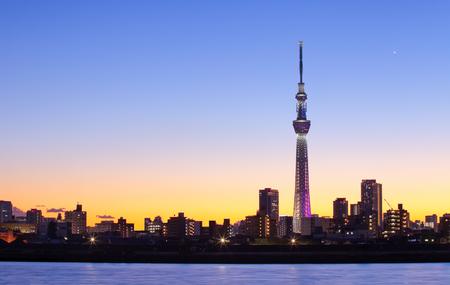 De stadsmening van Tokyo met het oriëntatiepunt van de de hemelboom van Tokyo Stockfoto - 50516893