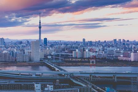 도쿄 스카이 트리 랜드 마크가있는 도쿄 시티 뷰 스톡 콘텐츠