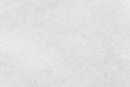 sfondo e la trama del modello di carta bianca
