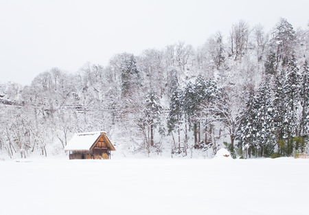 shirakawa go: Shirakawago village with snow in winter