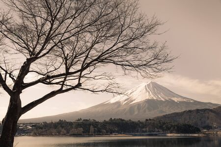 fuji san: Mt.Fuji at Lake Kawaguchiko in winter Stock Photo