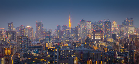 tokyo city: Tokyo city view with Tokyo tower in twilight
