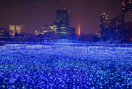 electric avenue: Best Tokyo christmas and winter season Illuminations at Tokyo Mid town Stock Photo