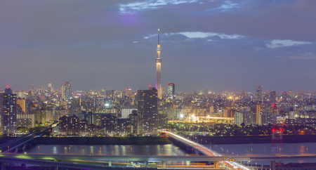 tokyo city: Tokyo city view and Tokyo sky tree in twilight time