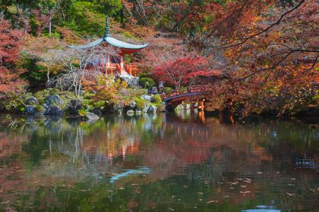momiji: Beautiful Japanese garden in autumn season at world heritage Daigoji Temple , Kyoto
