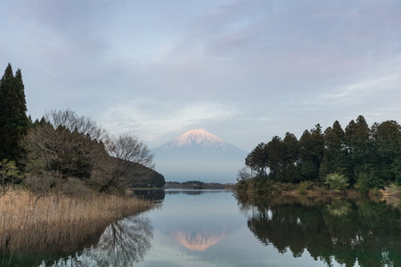 Mountain Fuji and Tanuki lake in evening spring season
