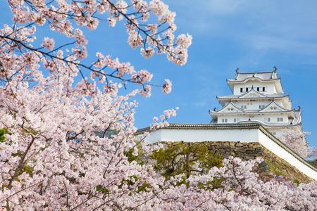 Castelo de Japão Himeji, White Heron Castle na bela temporada de flor de cerejeira sakura Foto de archivo - 83932404