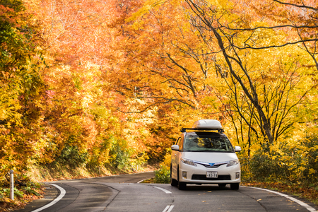 Hakkoda gold line at Aomori prefecture in autumn Stock Photo