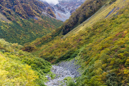 Autumn color of Kamokochi Karasawa at Nagano , Japan Standard-Bild