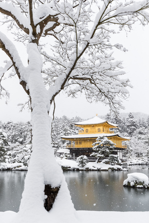 Zen temple Kinkakuji ( Golden Pavilion ) with snow fall in winter 2017. Kinkakuji is one of Kyoto's leading temples and Recognized by UNESCO as a World Cultural Heritage 版權商用圖片