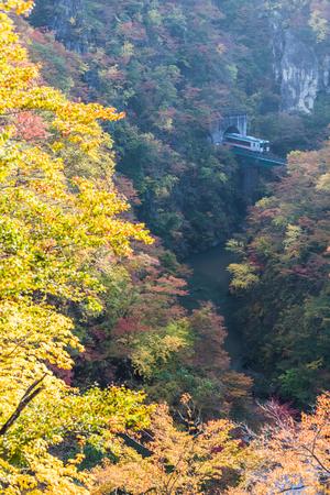 Rikuu line at Naruko gorge in autumn