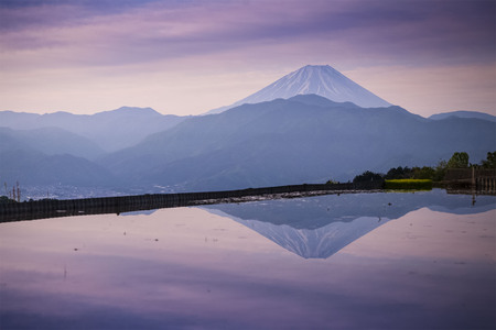 The morning atmosphere in the spring of Mt.Fuji With reflection in the water at rice fields 스톡 콘텐츠