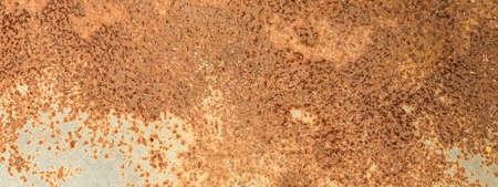 Panorama of Metal rusty texture background rust steel. Industrial metal texture. Grunge rusted metal texture, rust background Standard-Bild