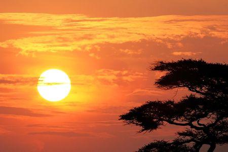 restlessness: Sunrise in Serengeti, Tanzania Stock Photo
