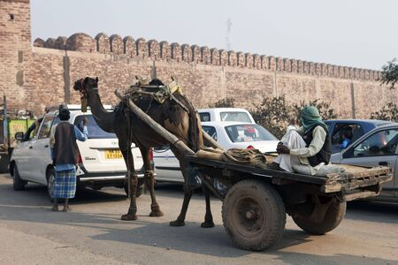 fatehpur sikri: Fatehpur Sikri,India - December 28,2009 : Scene of traffic, camels and cars mingle naturally on the roads of India. Editorial