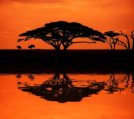 Image of sunset in the African savannah with reflection in water Stock Photo
