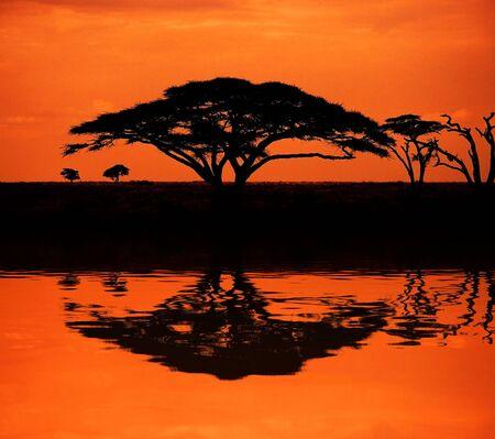 Imagen de la puesta de sol en la sabana africana con la reflexión en el agua