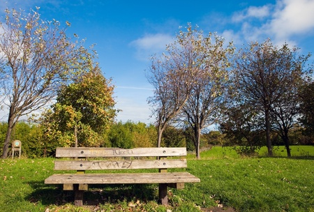 winter escape: solitary wooden bench in a park