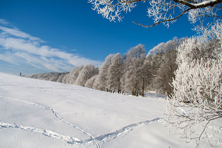 Winter in Germany 写真素材