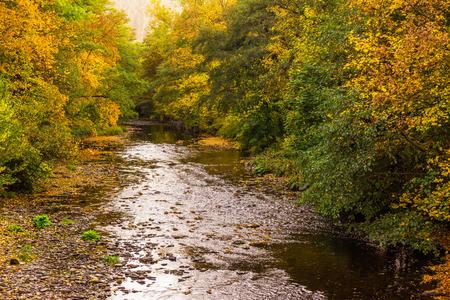 River Schwarza in Thuringia