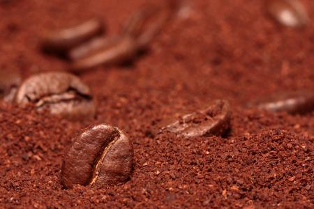 Coffee bean in coffee powder