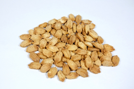 brownish: Bitter gourd seeds isolated