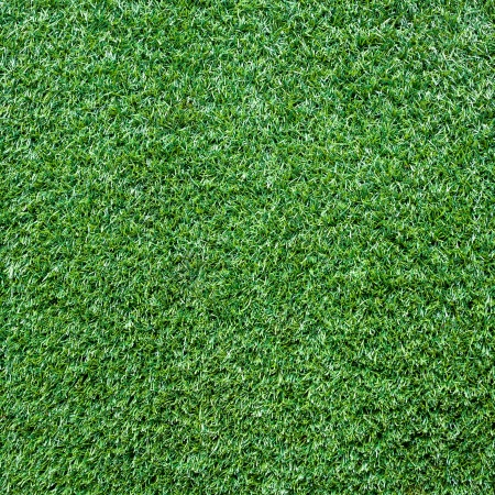 Turf Grass Texture and surface photo