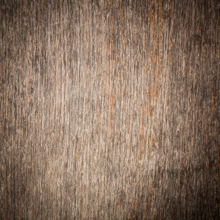 texture of bark wood background photo