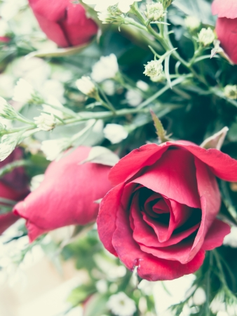 Red roses bouquet for vintage photo