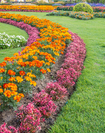 Colourful Flowerbeds and Winding Grass Pathway in an Attractive Thailand Formal Garden photo