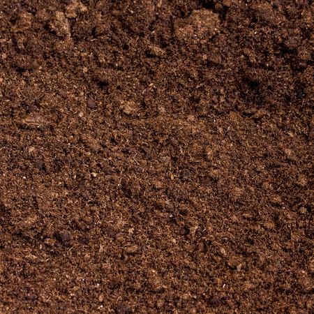 peat moss soil Standard-Bild