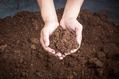 soil paet moss on hand photo