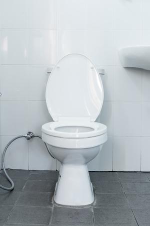 flush: flush toilet in bathroom