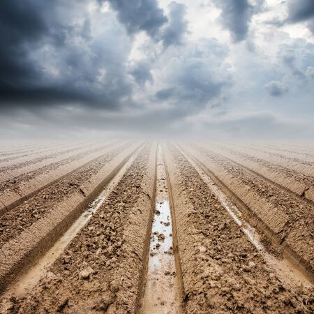 furrow: Soil preparation on field and rainclouds