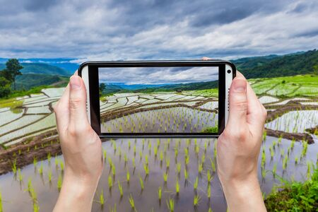 Hand taking picture with mobile at Green Terraced Rice Field in Chiangmai, Thailand