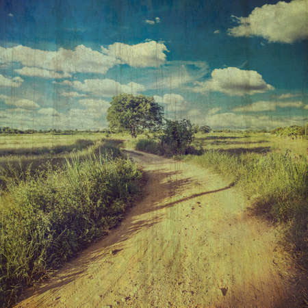 country road: country road and field vintage with texture effect.