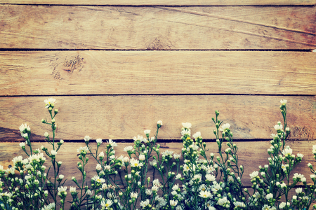floorboards: Flowers on wood texture background with copyspace. Vintage style. Stock Photo