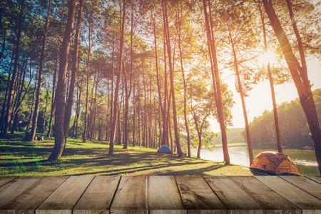Bosque del árbol de pino y suelo de planchas de madera con la salida del sol. Estilo vintage.